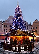 Christmas tree on the Svornosti square